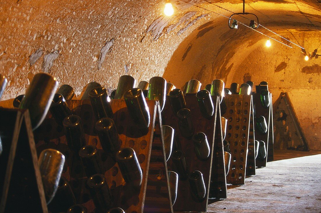 Champagne laid down in cellar of Perrier-Jouet, Champagne