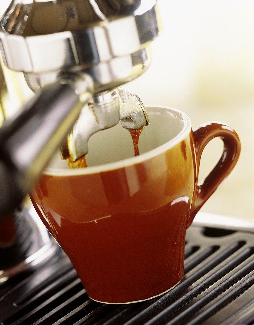 Espresso cup under espresso machine