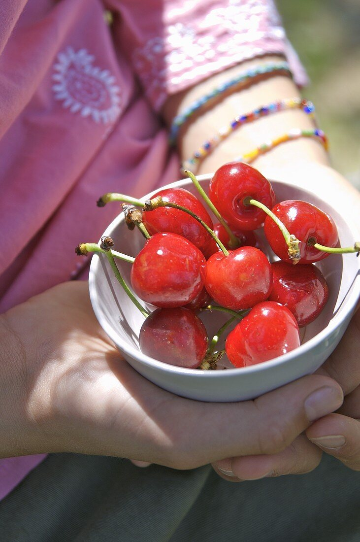 Hands holding a bowl of cherries