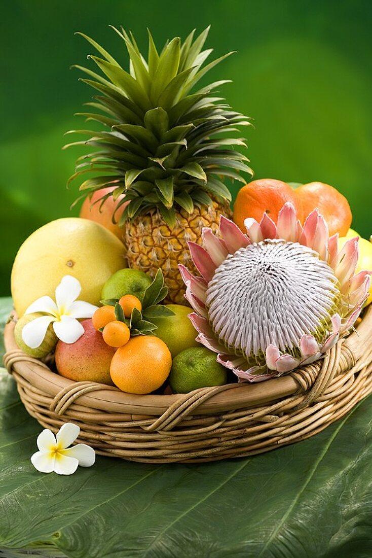 Basket of tropical fruit, plumeria and protea
