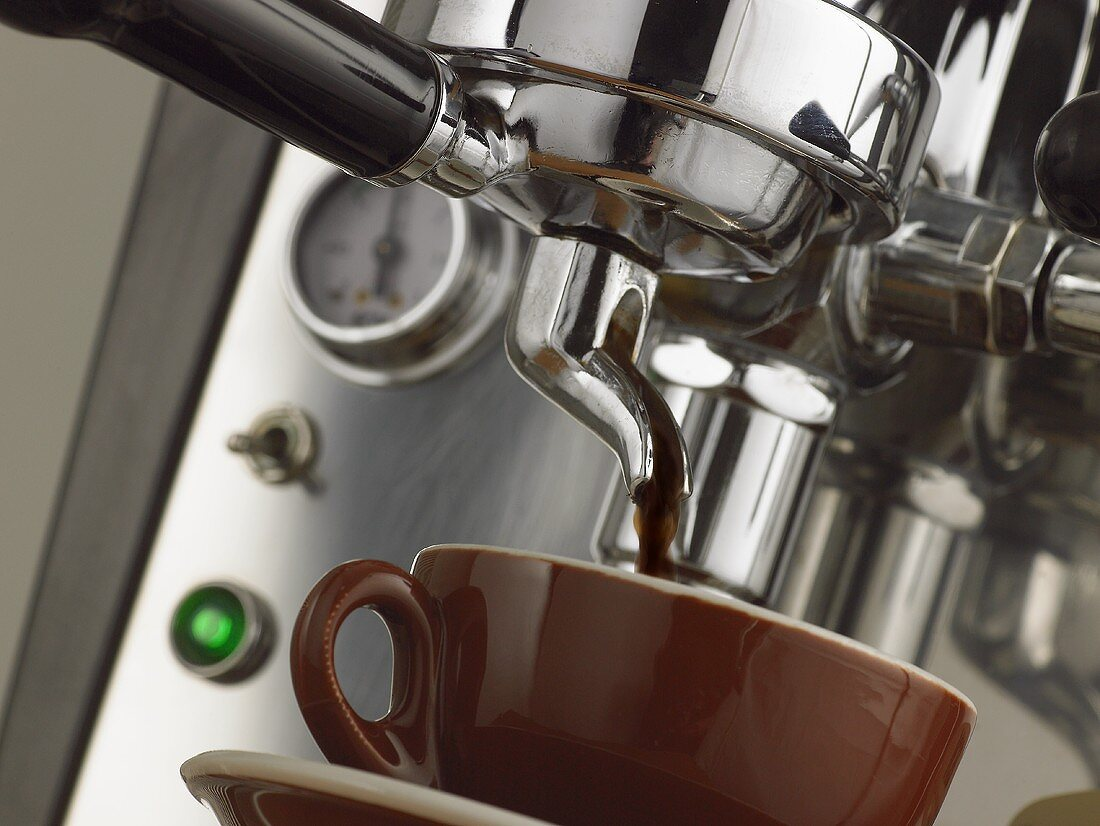 Espresso machine in action: filter holder and cup