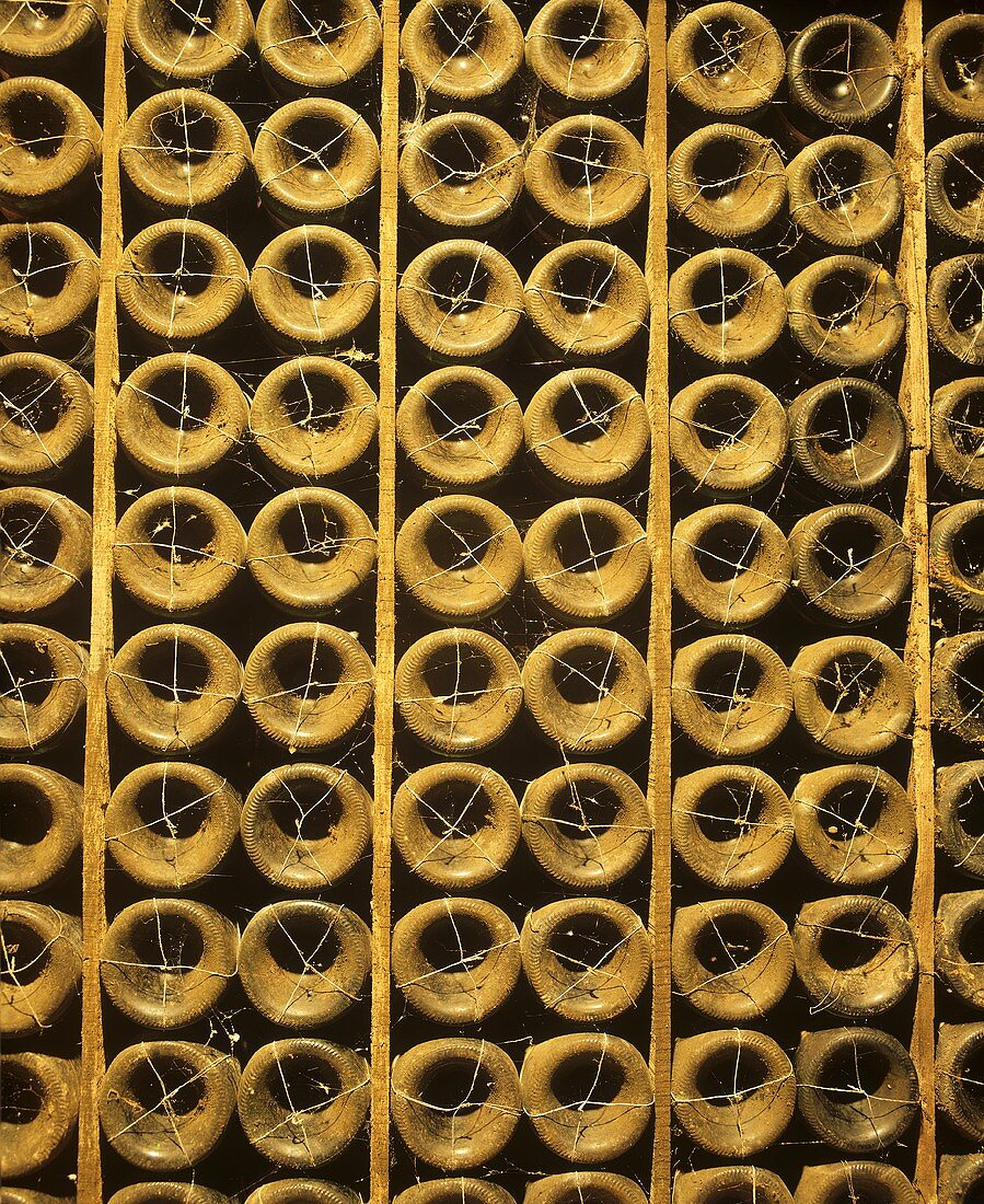 Old Alambrado bottles, Bodegas Lopez de Heredia, Haro, Rioja