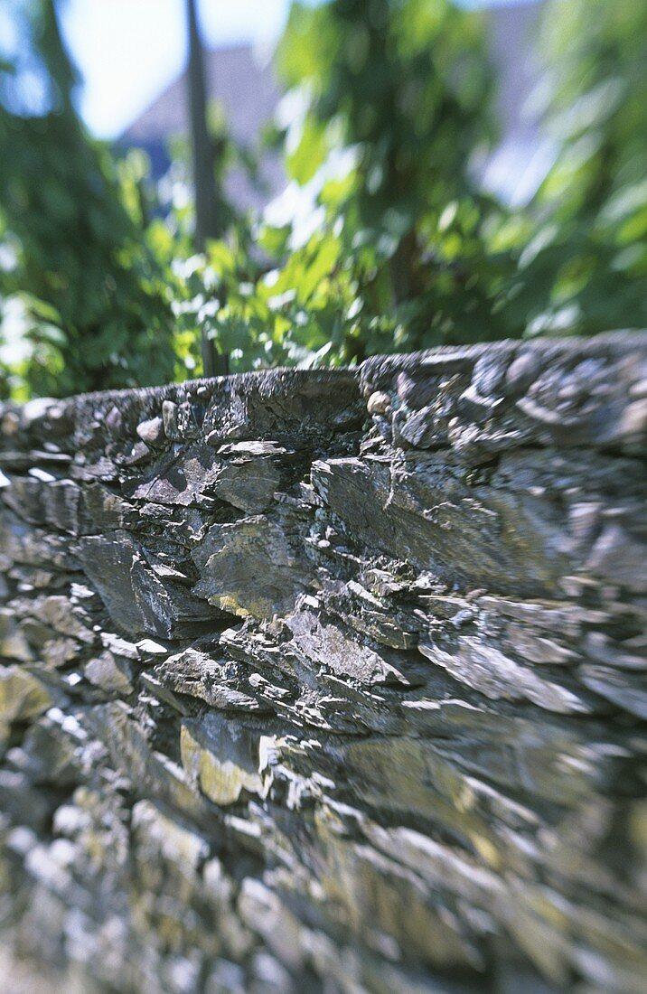 Stone wall around a vineyard