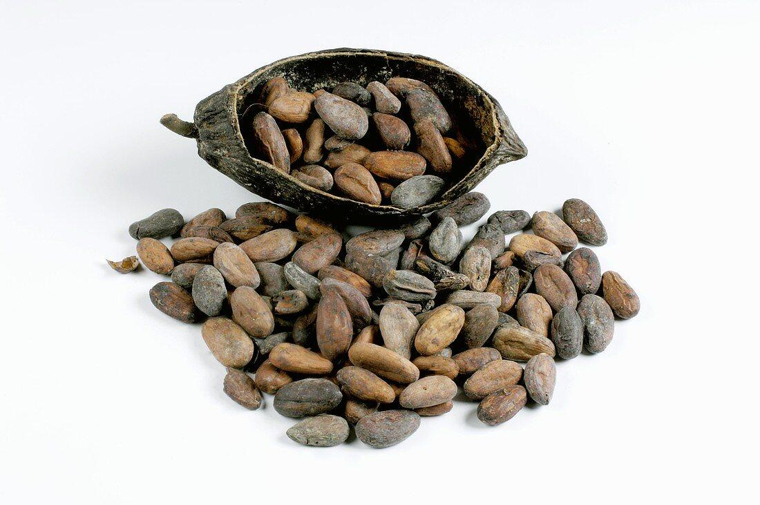Cocoa beans in half a cacao pod