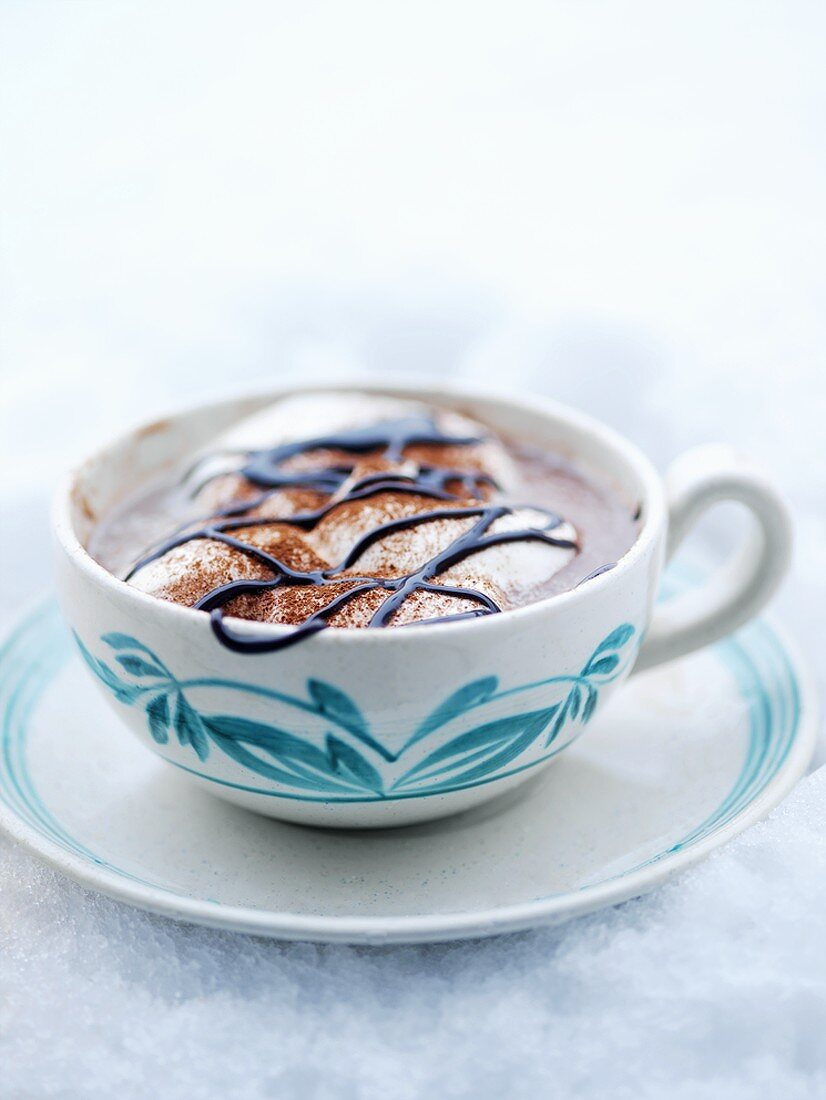 A cup of cocoa with marshmallows