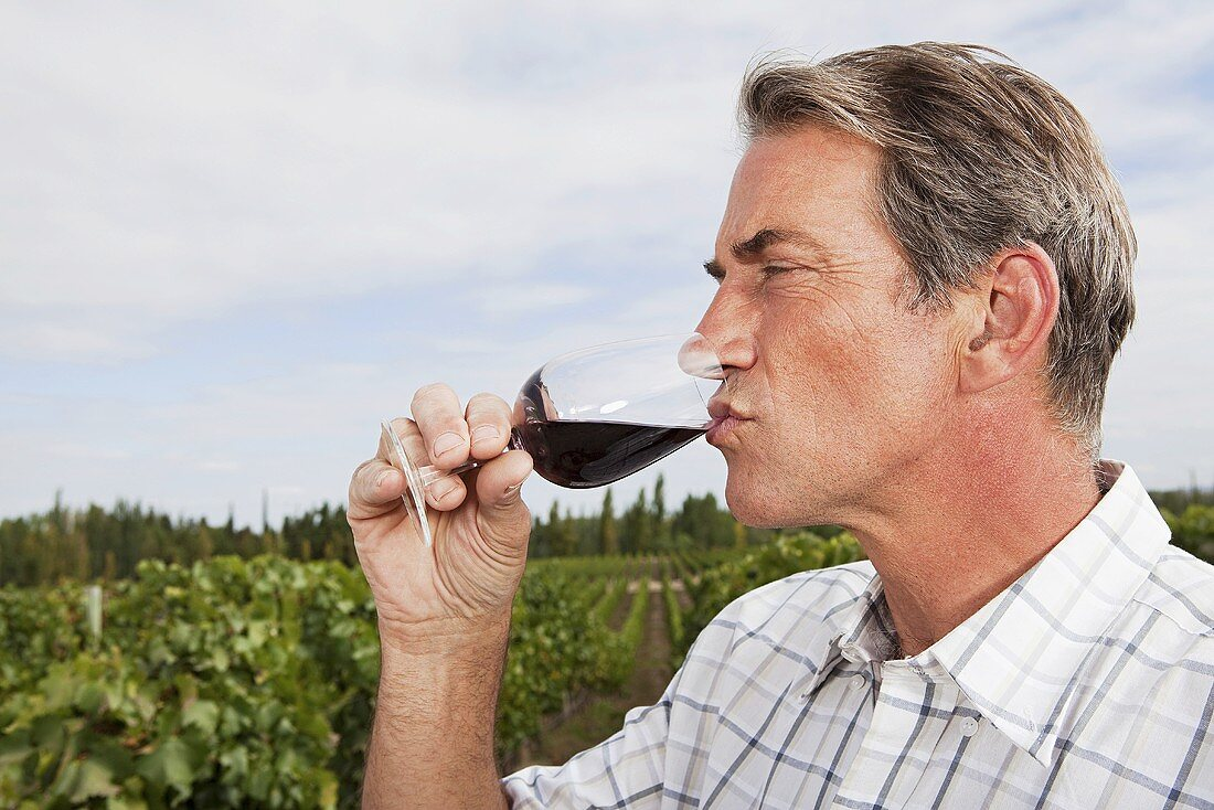 A man drinking red wine at a vineyard