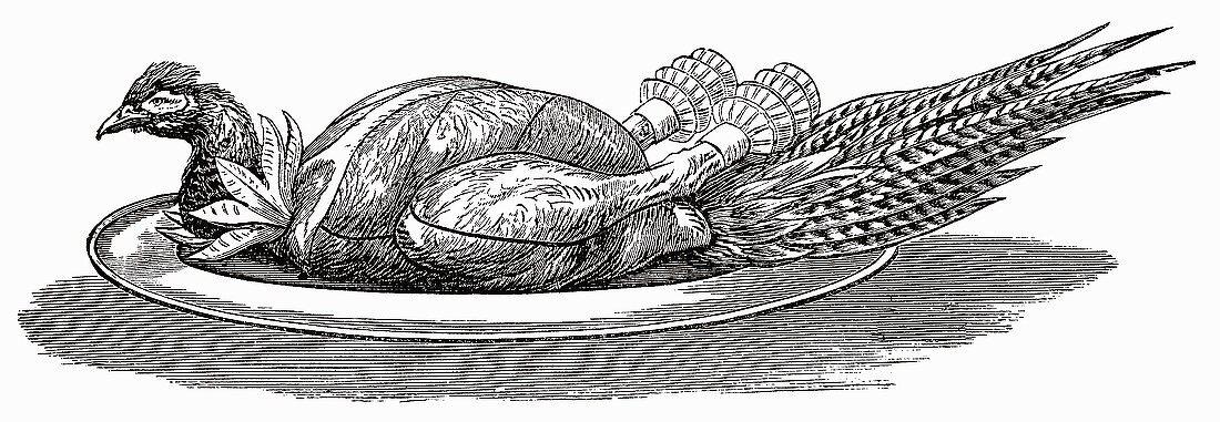 Pheasant on silver platter (Illustration)