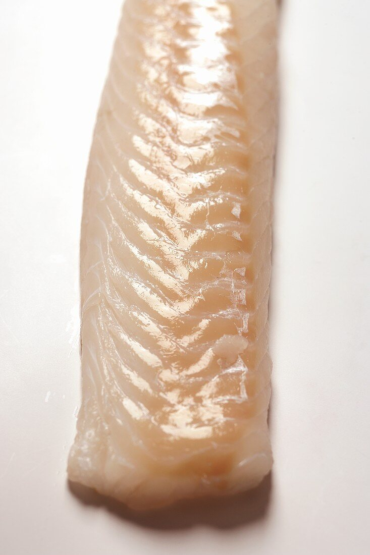 Back of a cod