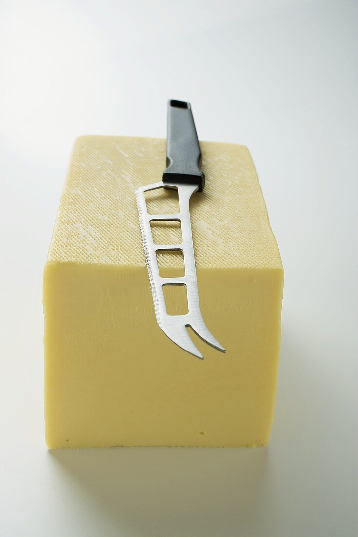 Semi-hard cheese with cheese knife