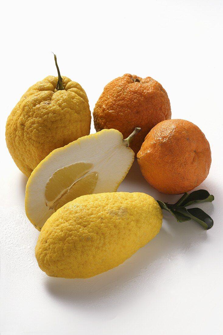 Citrons and ugli fruits