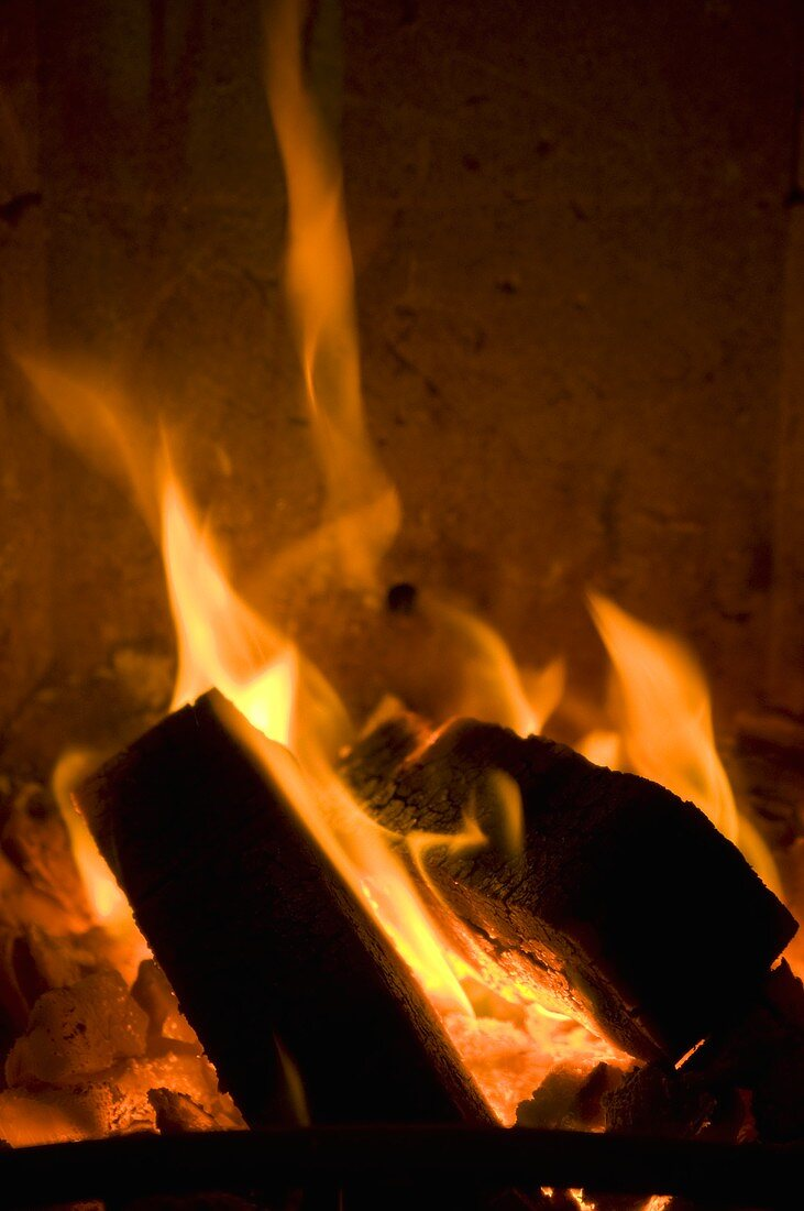 Brennendes Holzfeuer