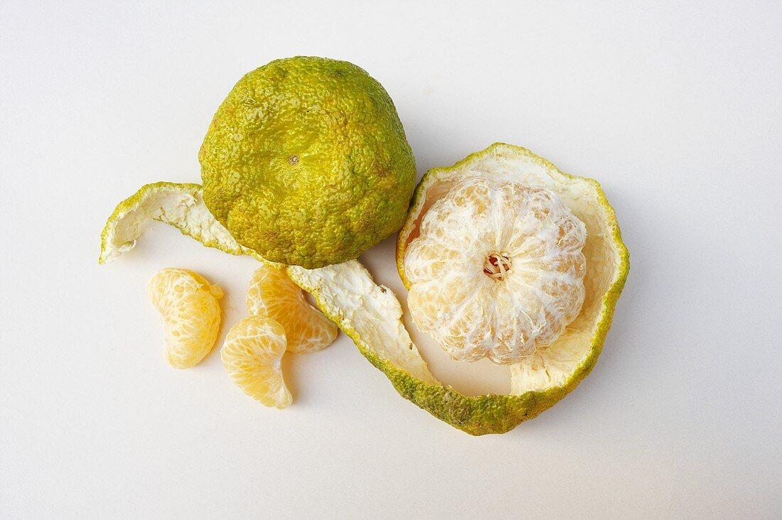 Ugli Fruit; Whole, Peeled and Segments; From Above; White Background