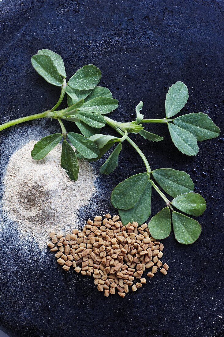 Fenugreek; Fresh, Powdered and Seed; From Above