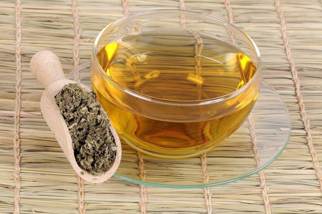 Eine Tasse Tee aus getrocknetem Moxakraut