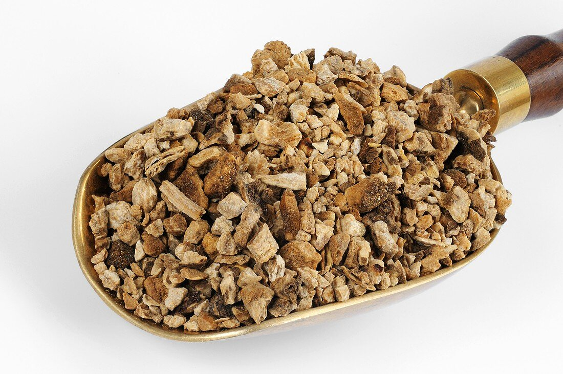 Dried Atractylodes root in a scoop