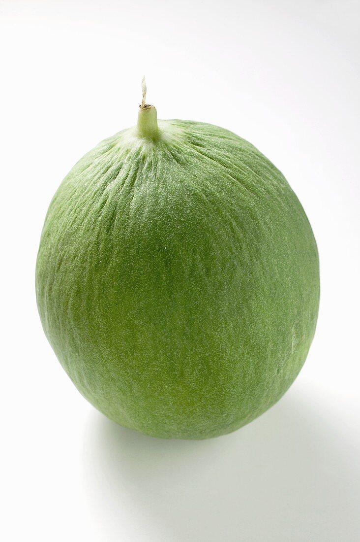 Green honeydew melon