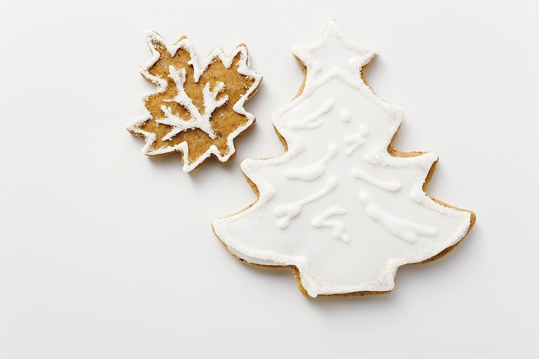 Gingerbread fir tree and leaf with white icing