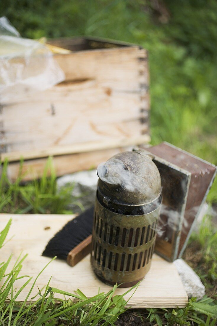 Beekeeping equipment and beehive