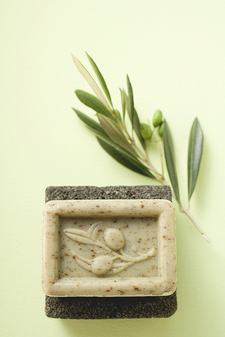 Olive soap on pumice stone, olive branch