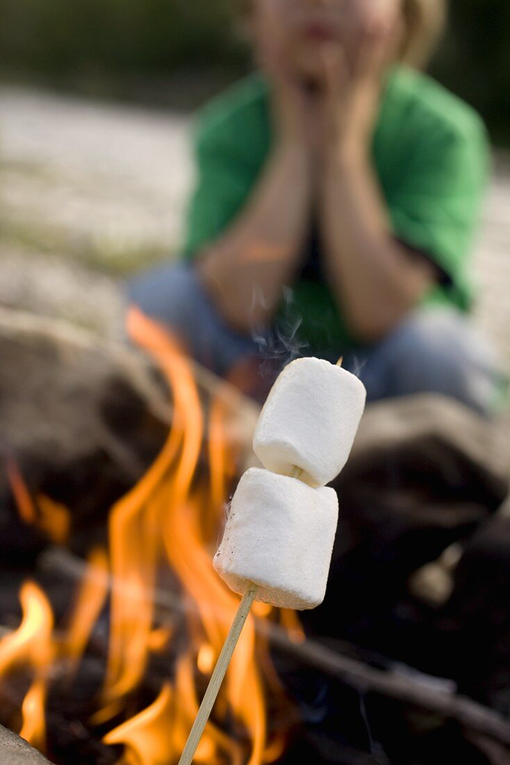 Marshmallows on stick in front of camp-fire, child in background