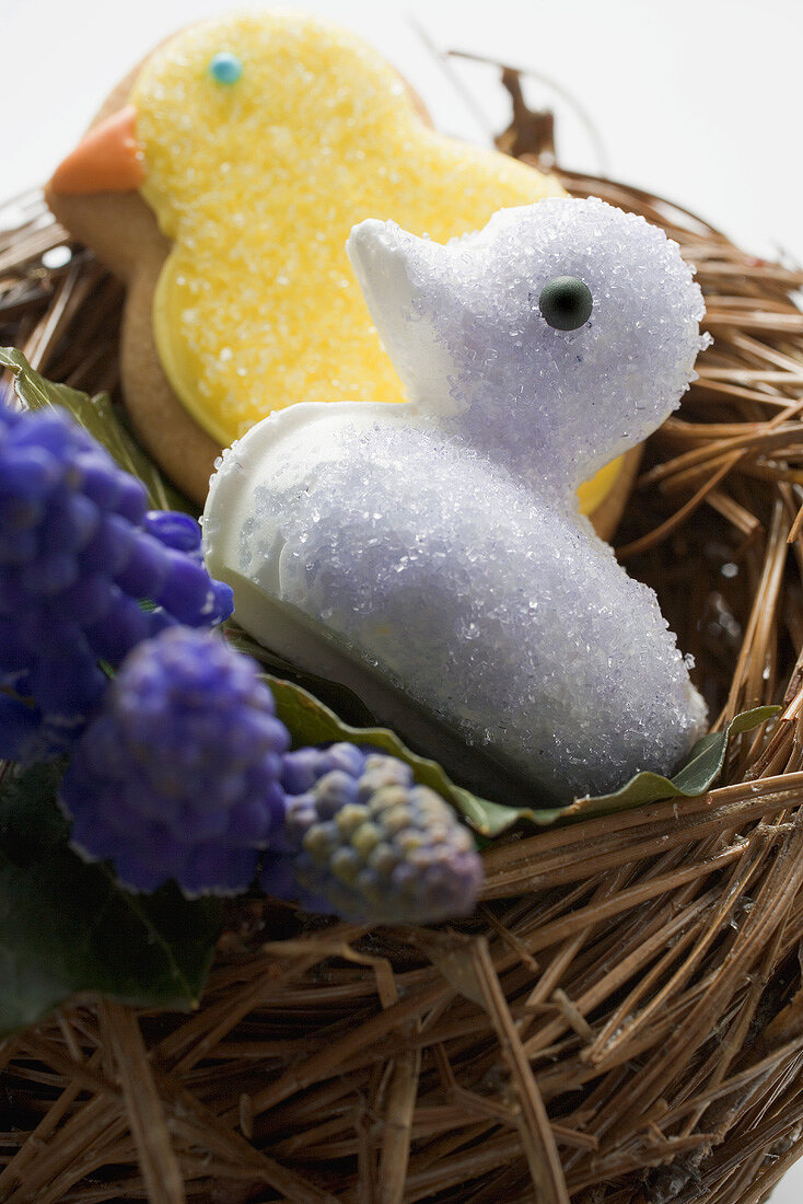 Easter biscuits (chicks) & grape hyacinths in Easter nest