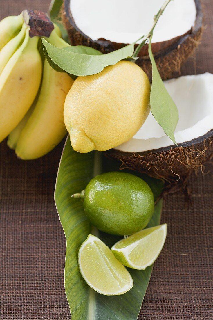 Lemon, limes, bananas and coconut