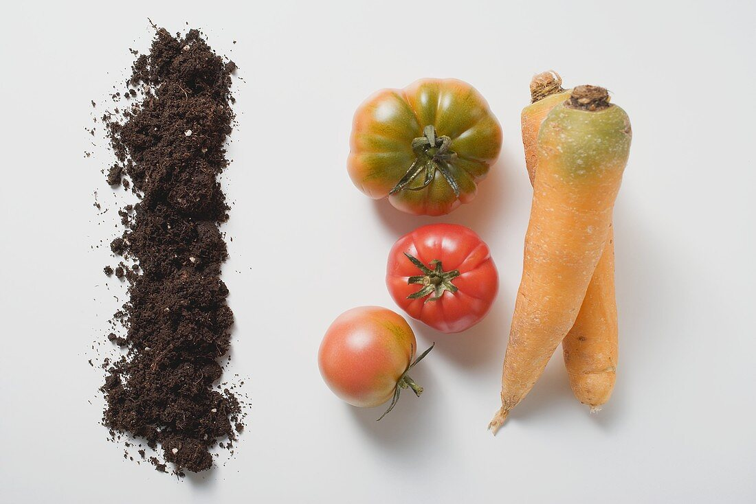 Two carrots, three tomatoes and soil