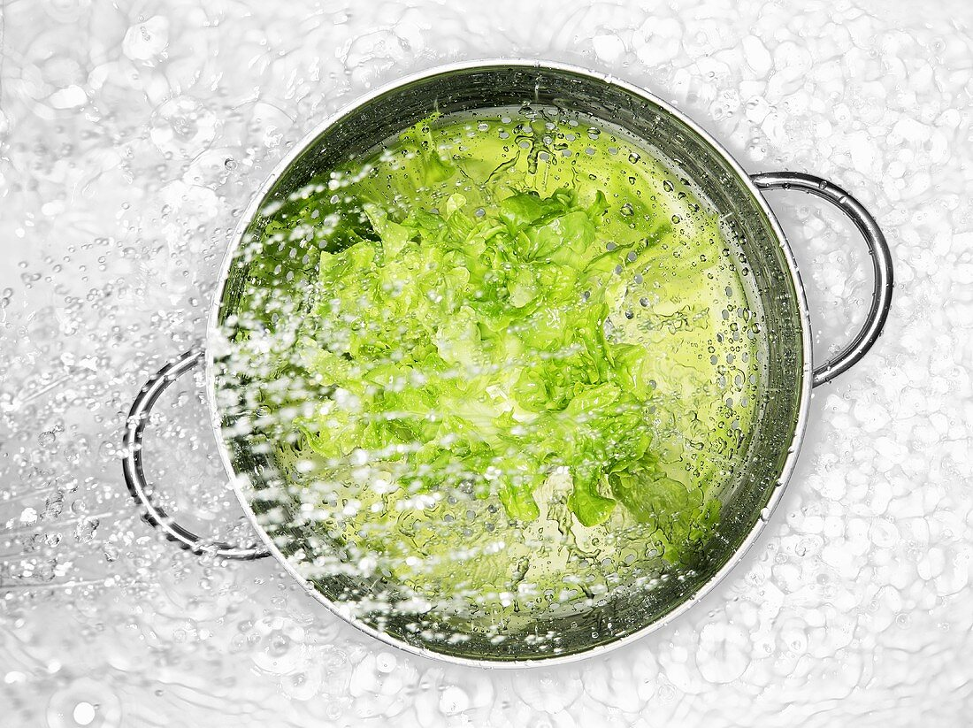 Fresh lettuce leaves being sprayed with water