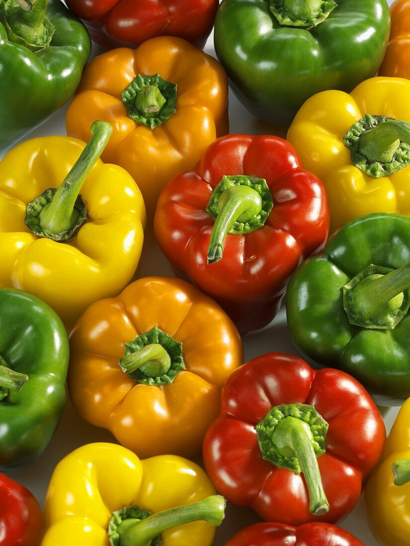 Red, yellow, green and orange peppers