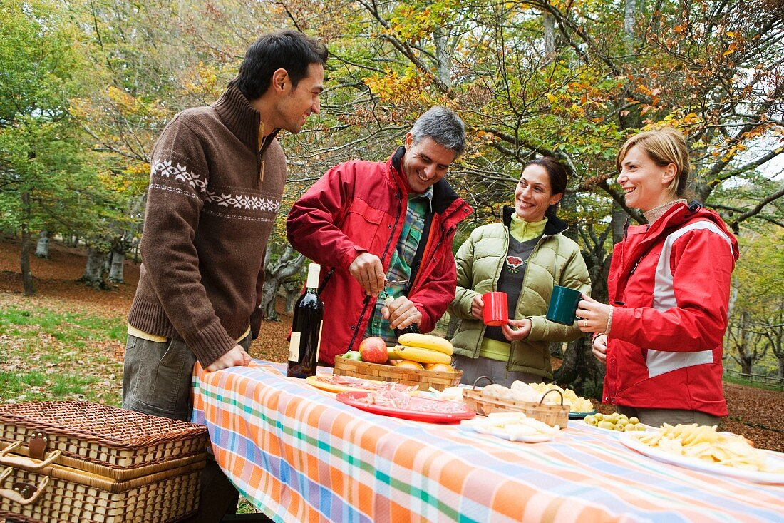 Two couples on an autumn picnic (outside)
