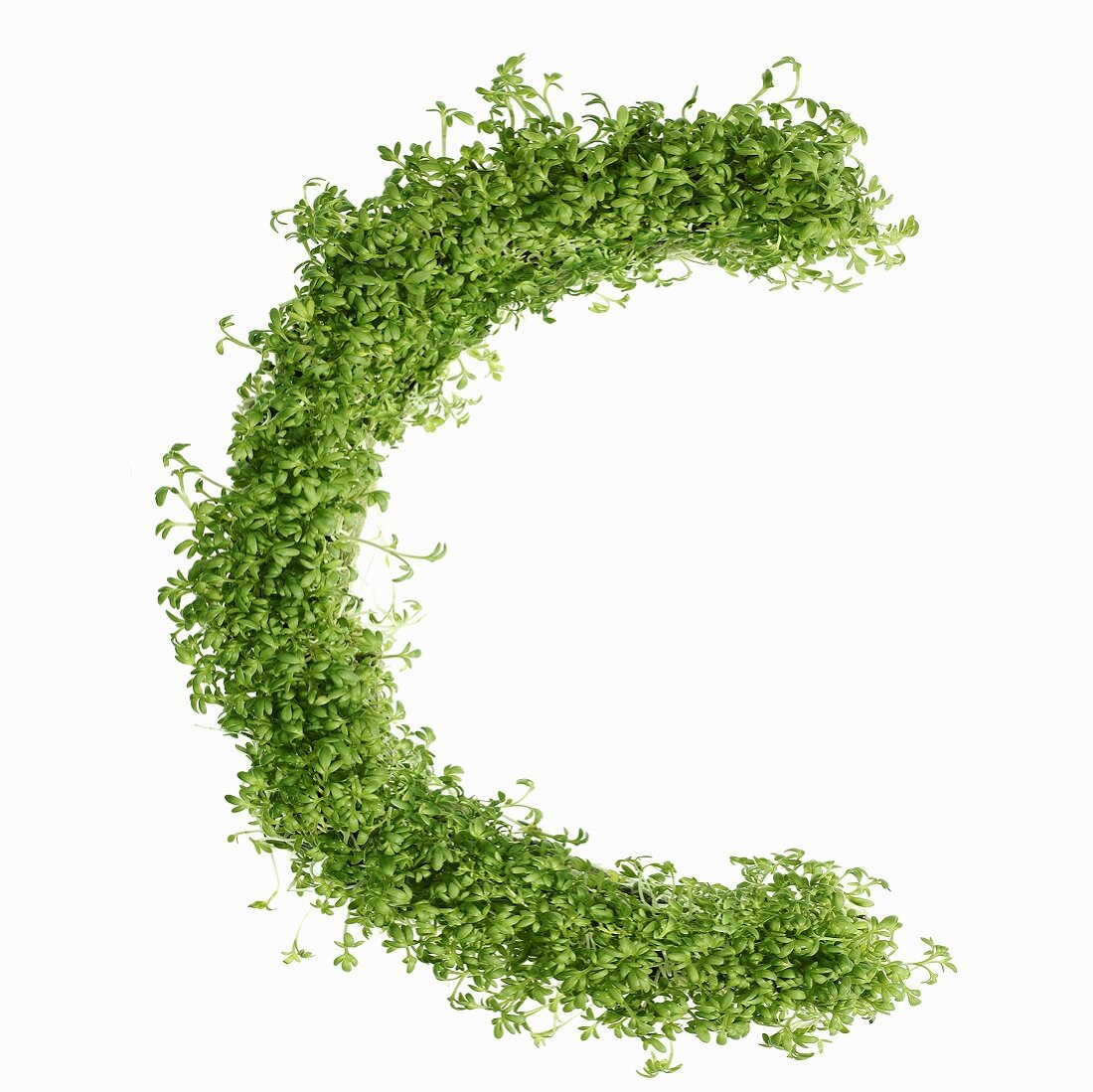 The letter C in cress