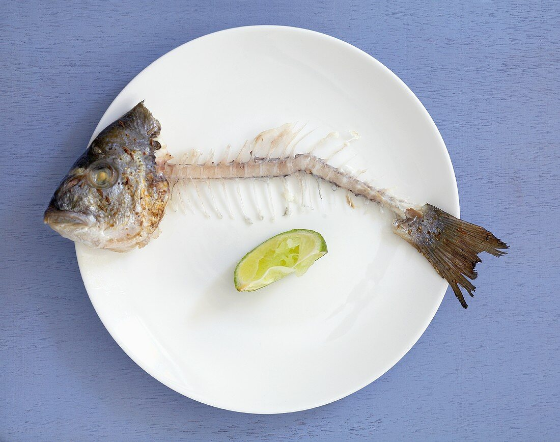 Fish bones with head and tail on plate (overhead view)