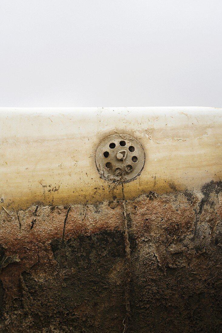 Rusty bathtub (detail)
