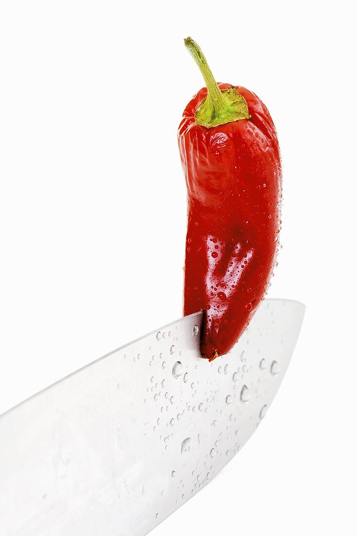 Red chilli on knife blade