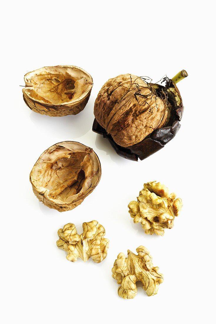 Shelled and unshelled walnut