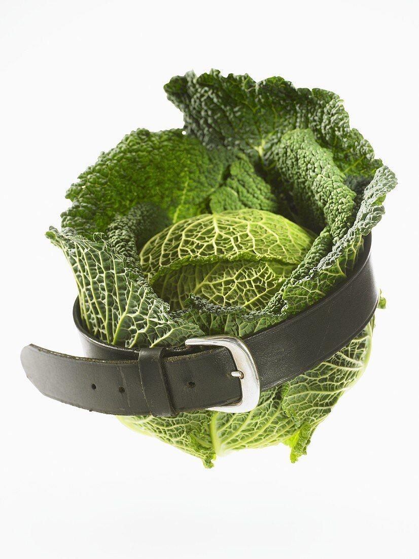 Savoy cabbage with a belt round it