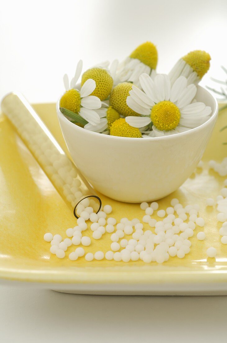 Chamomile flowers and globuli (small pellets)