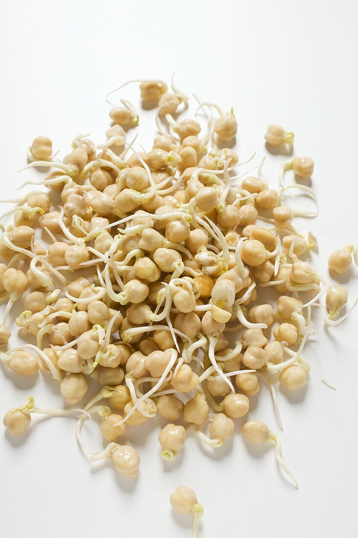 Chick-pea sprouts (overhead view)