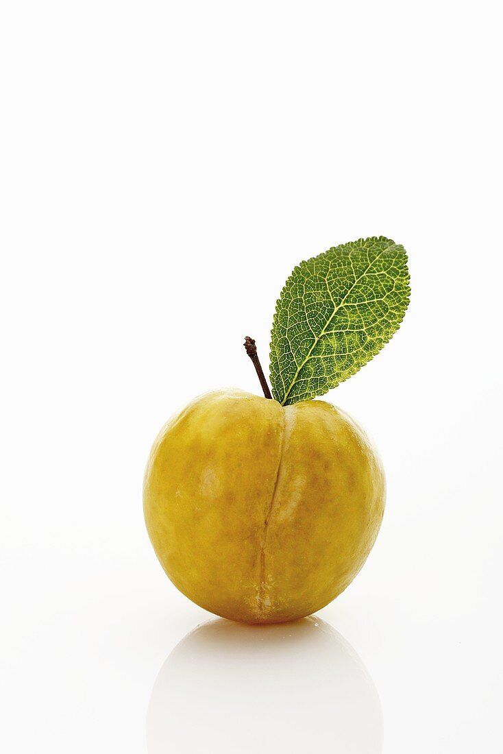 One yellow plum with leaf