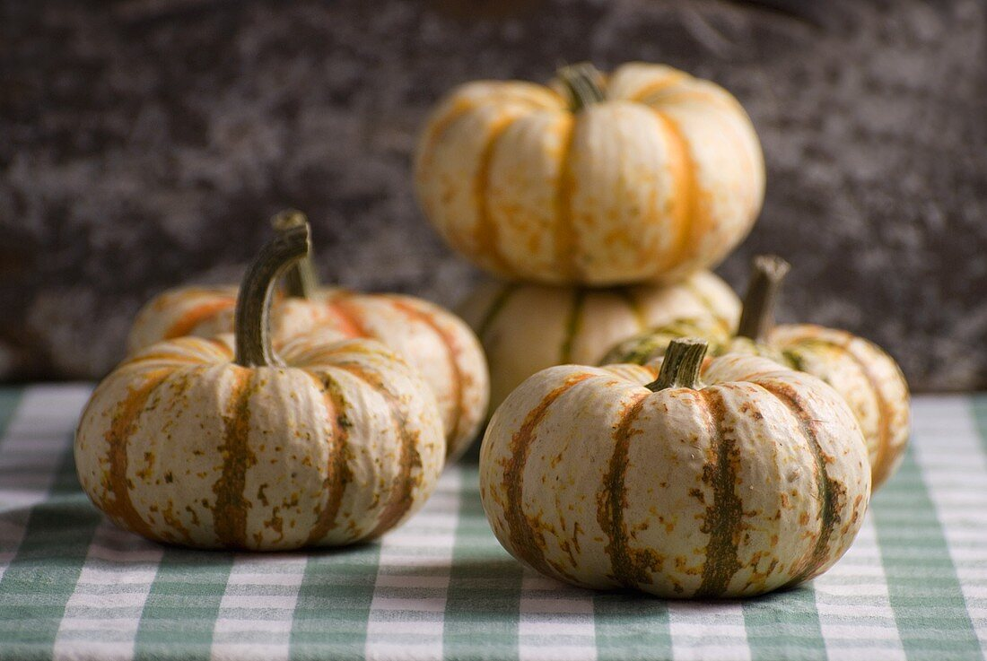 Striped Squash on Green and White Table Cloth