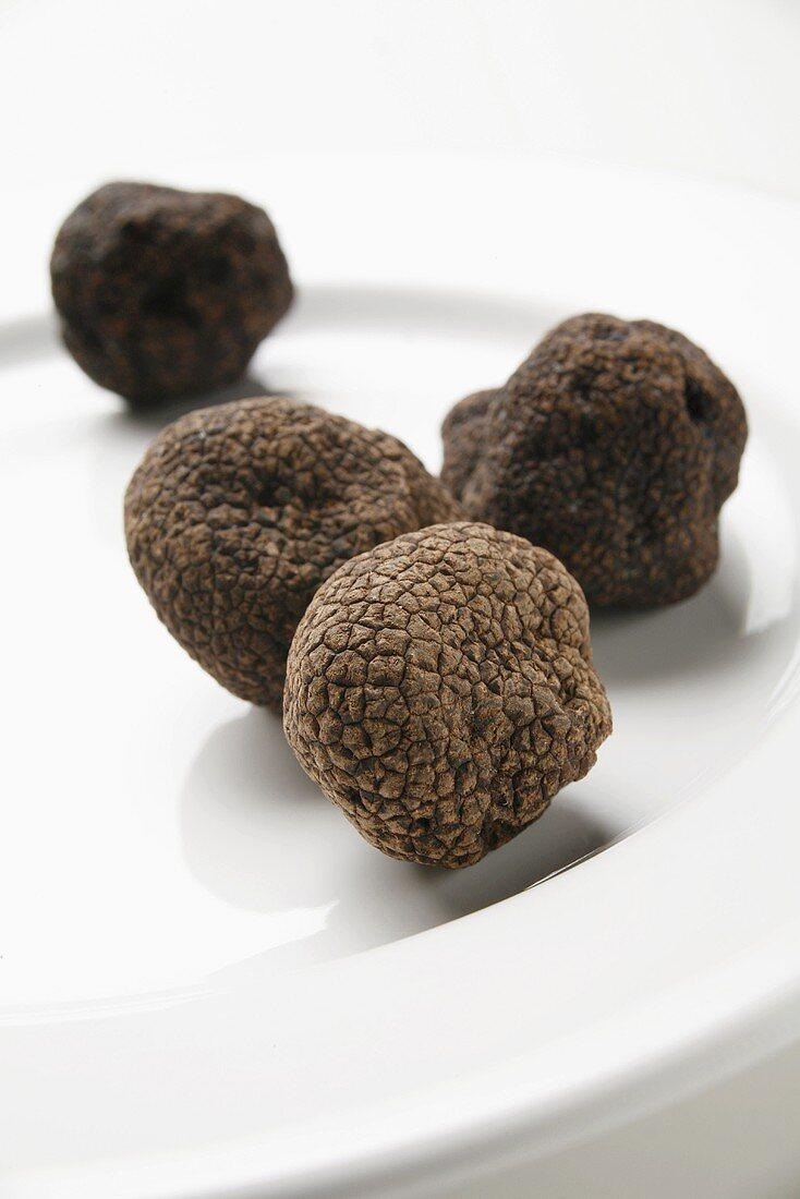 Black truffles (Chinese truffles) on plate