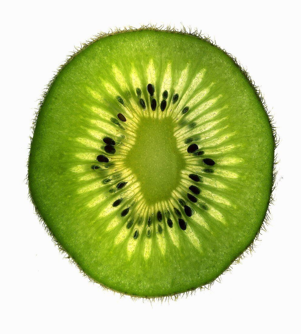 Slice of kiwi fruit, backlit