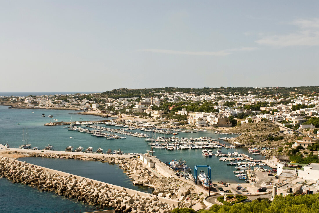 Elevated view of coastal town, harbour, yachts, and houses in Italy