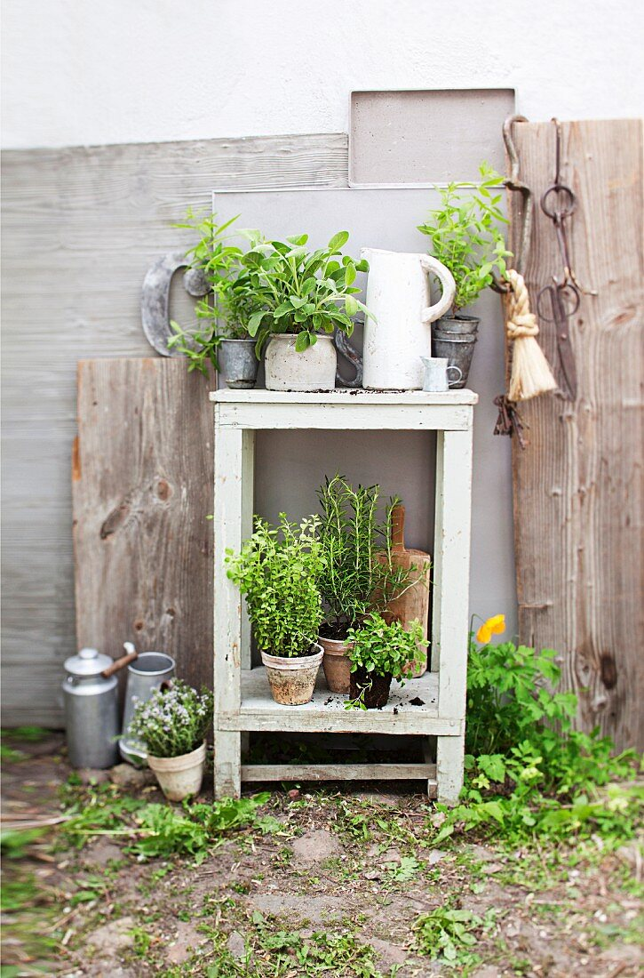 Fresh herbs in pots on a garden table