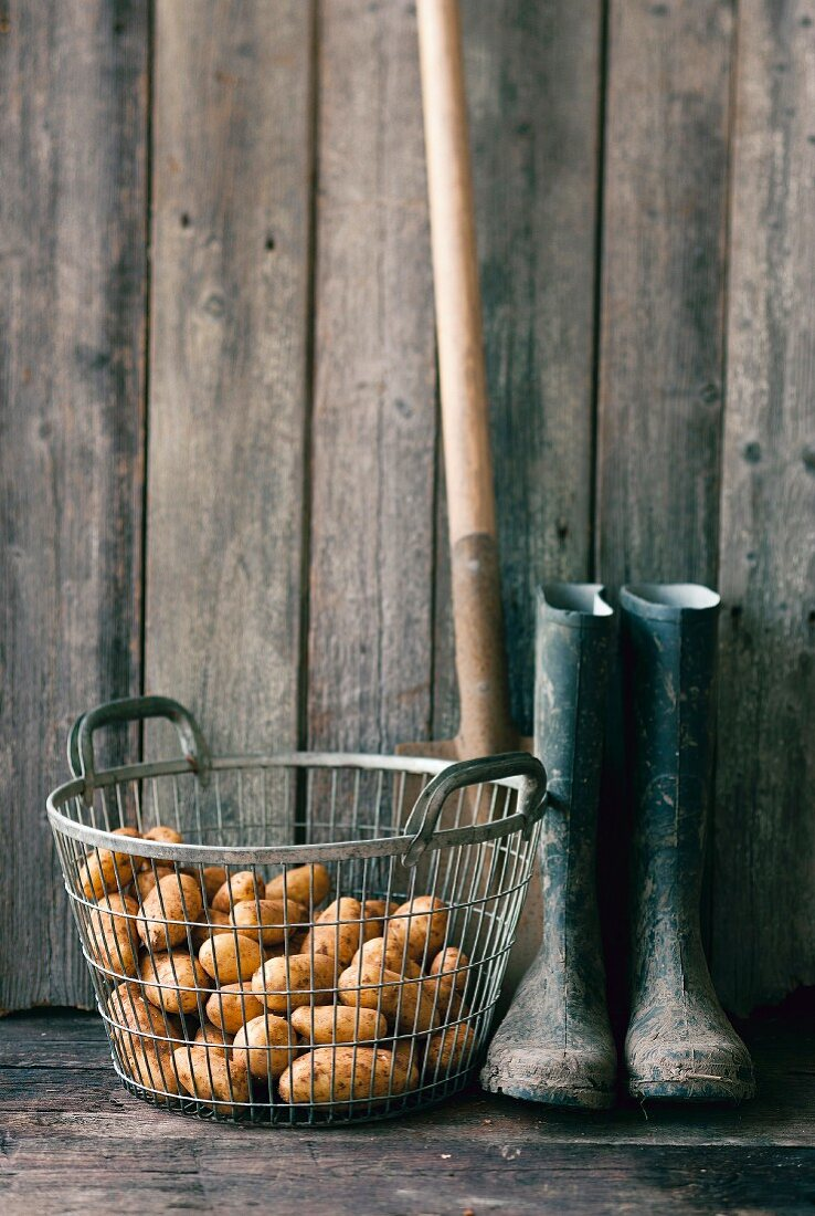 An arrangement featuring a basket of potatoes, wellie boots and a spade