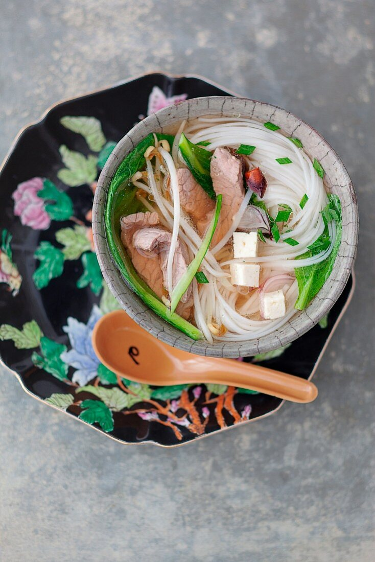 Pho bo (beef soup with tofu and rice noodles, Vietnam)