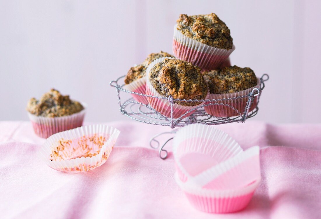 Baking with stevia: muffins with poppyseeds