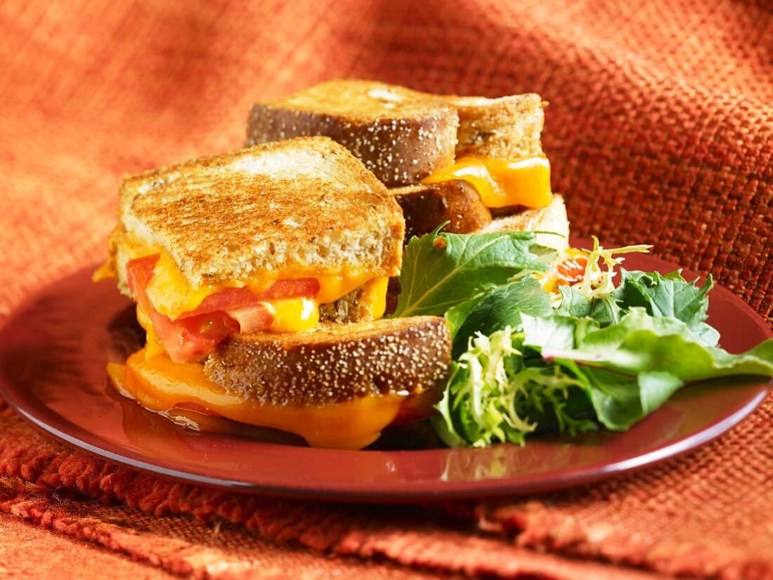 Grilled Cheese and Tomato Sandwich;Quartered and Stacked; Side Salad
