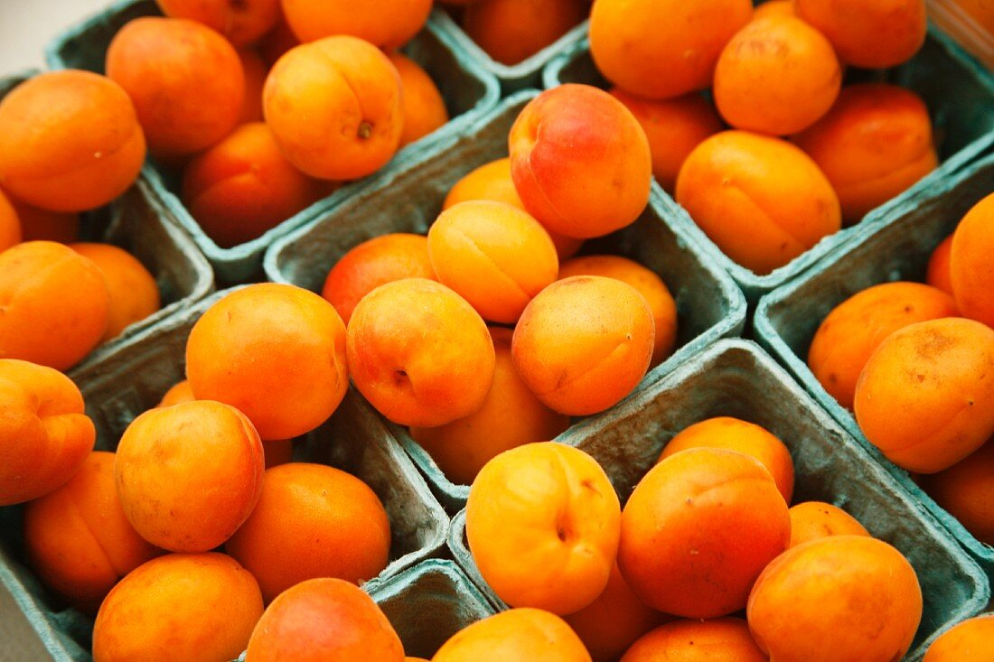 Organic Apricots at a Farmer's Market