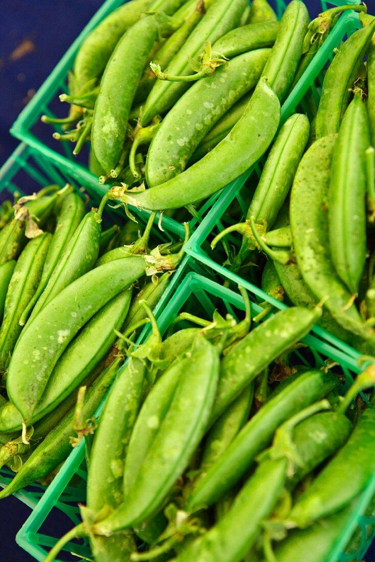 Organic Heirloom Sugar Snap Peas at a Farmers Market